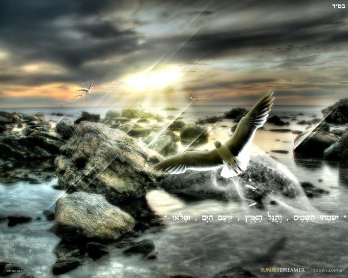 תהילים-תמונת-נוף-ציפורים-ים