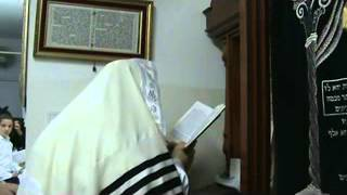 האדמור מהאלמין מתפלל  - סליחות