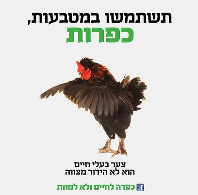 ynet-  כפרות בשימוש עם מטבעות