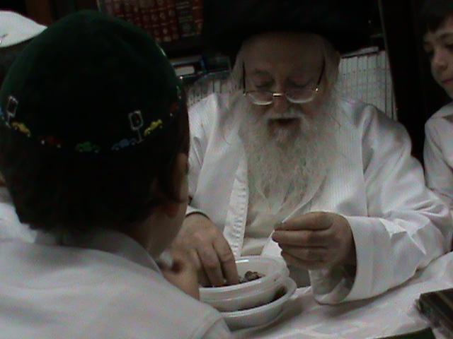 האדמור מהאלמין רבי שלום יהודה גרוס אבות ובנים מוצאי שבת הגדול (26)
