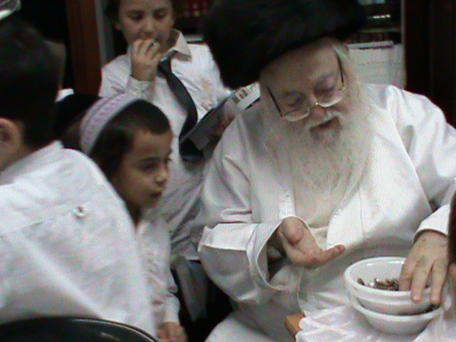 האדמור מהאלמין רבי שלום יהודה גרוס אבות ובנים מוצאי שבת הגדול (44)