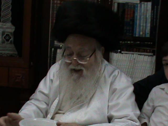 האדמור מהאלמין רבי שלום יהודה גרוס אבות ובנים מוצאי שבת הגדול (60)