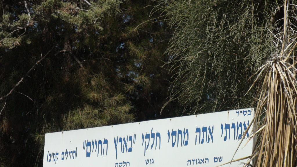 האדמור מהאלמין בתפילות בבתי קברות בבית שמש וישובים הסמוכים (2)