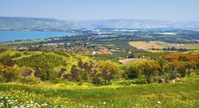 ארץ ישראל- בחינם